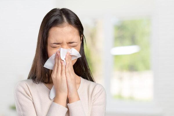 Czy klimatyzacja pomaga alergikom?